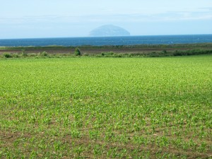 Ailsa Craig from A77
