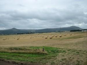 Harvest time near Auchtermuchty